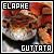 Snakes: Elaphe Guttata (Corn Snake):